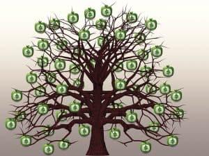 יוזמת הר הכסף